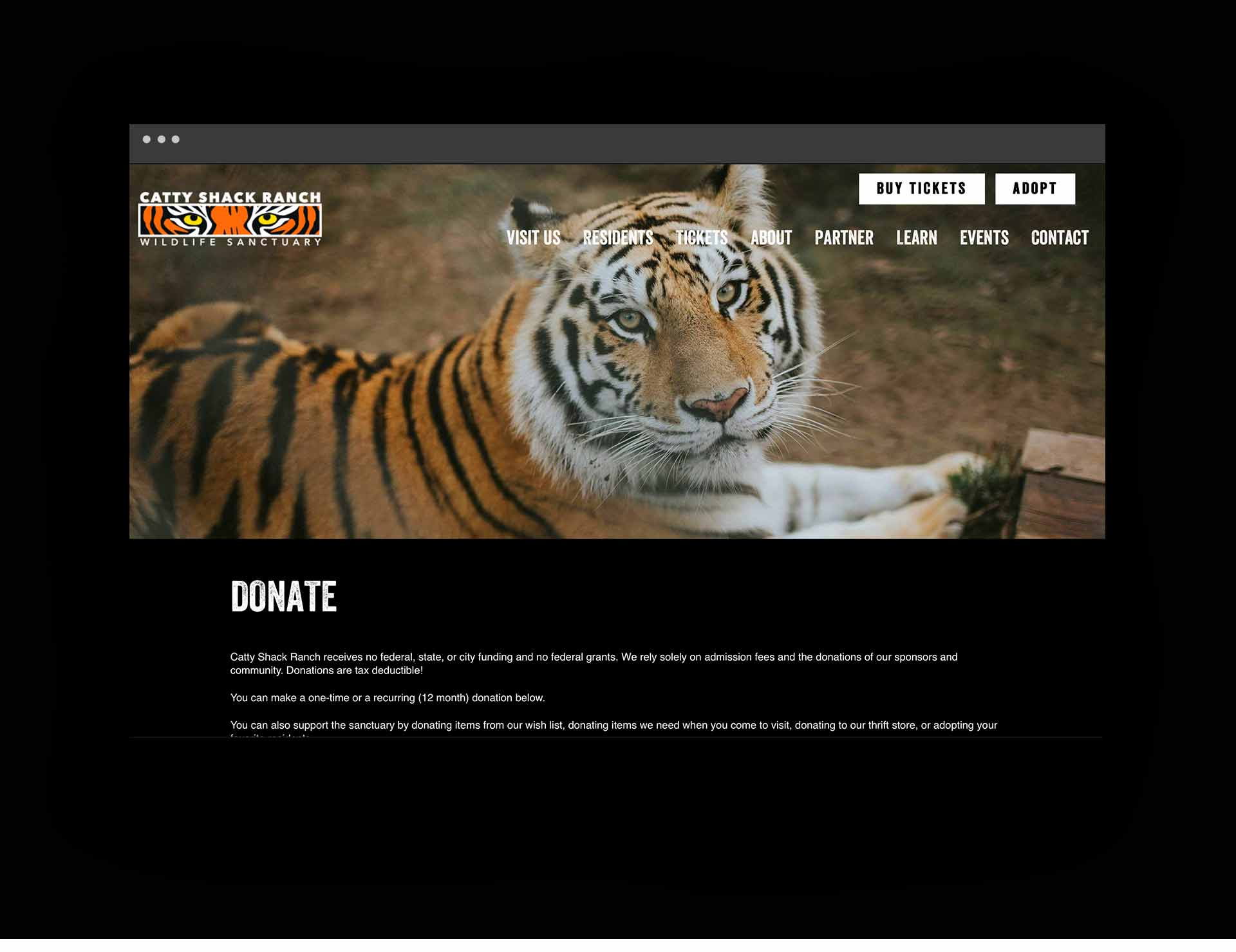 Catty Shack Ranch Web design page tiger
